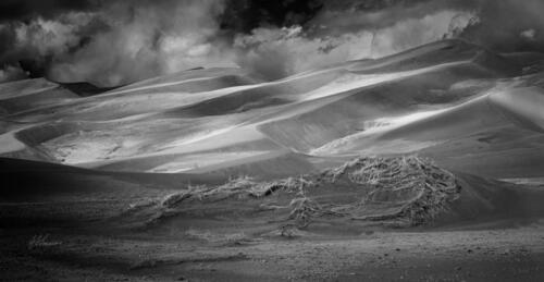 Great Sand Dunes National Park #0138