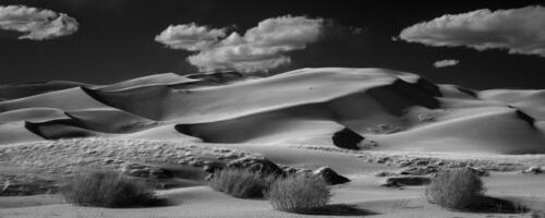 Great Sand Dunes National Park #4394